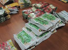 Выбираем семена для дачного участка: проверенные советы для удачной покупки