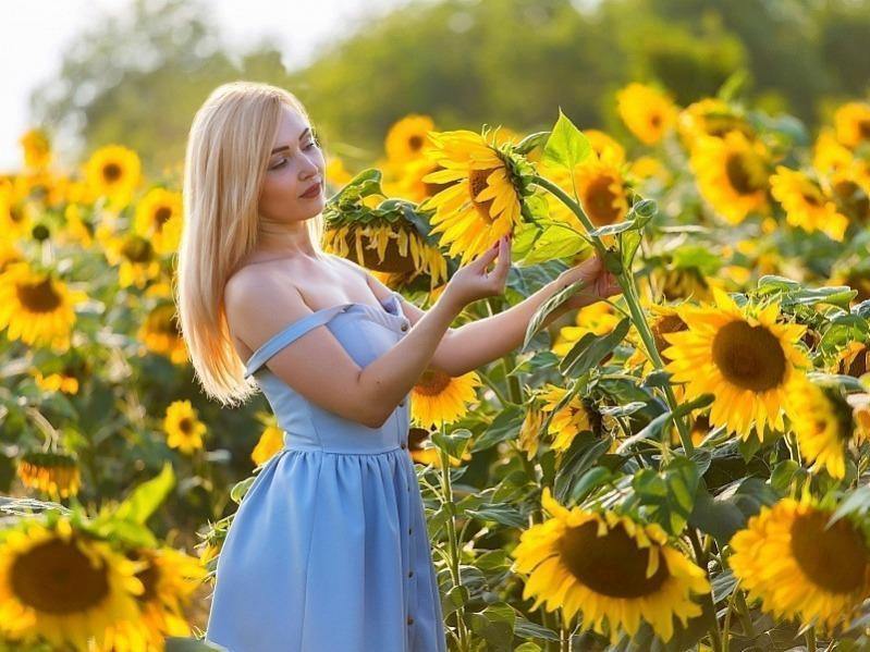 Приметы на 24 августа – день, когда можно поссорить любовников и узнать будущее по подсолнуху