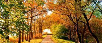 Приметы и ритуалы на 28 августа – Успение Пресвятой Богородицы